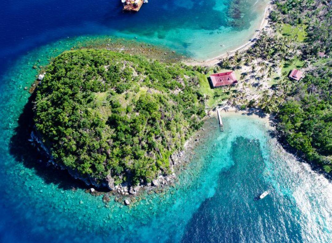 """Les inscriptions pour """"la Palme verte du Tourisme"""" sont ouvertes"""