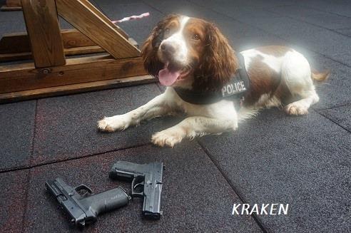 """Le chien policier """"Kraken"""" n'est plus"""