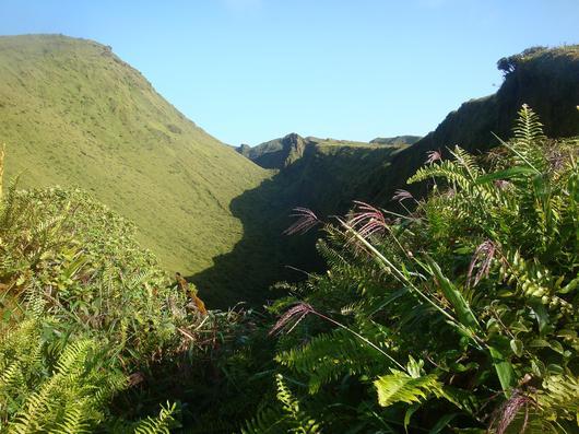 Montagne Pelée et massif des Pitons : le gouvernement a déposé le dossier à l'UNESCO