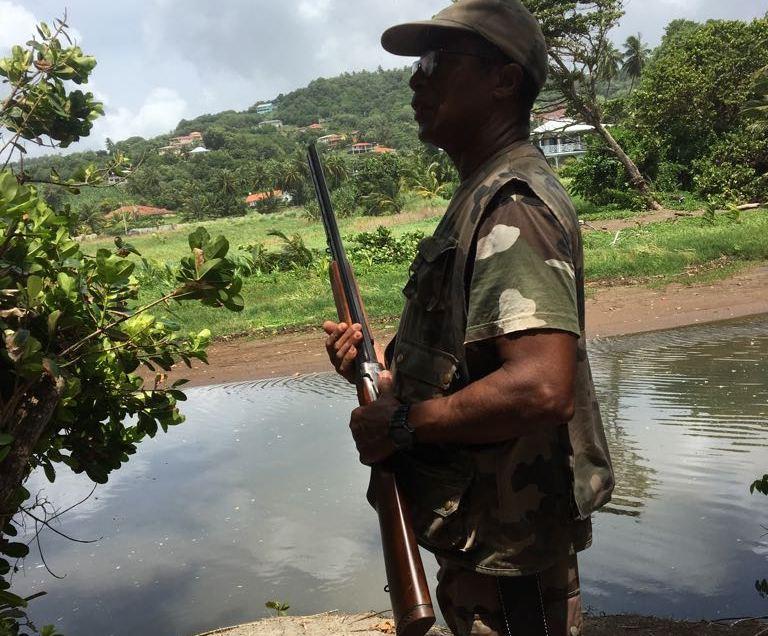 La chasse est ouverte en Martinique