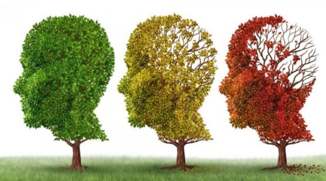 Un film pour sensibiliser sur la vie des aidants et la maladie d'alzheimer