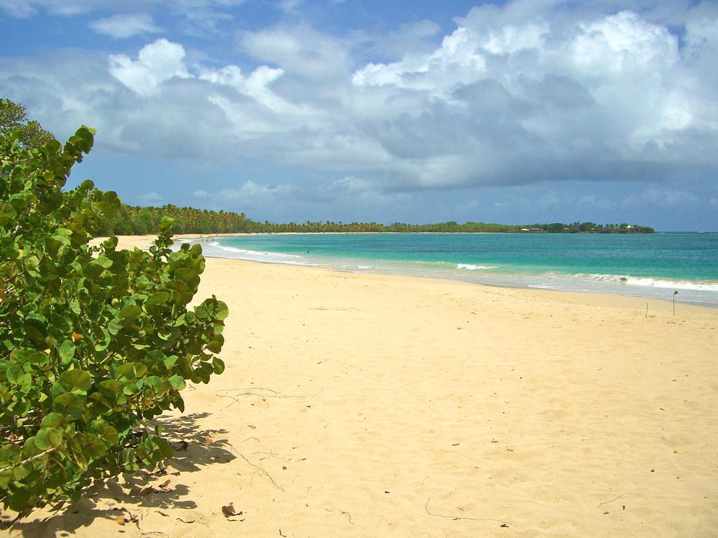 Tempête Dorian: pas de nouvelle analyse des plages de Sainte-Anne avant jeudi