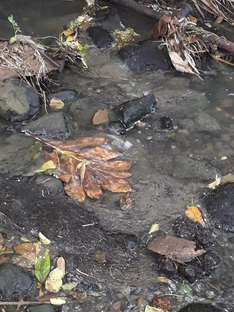 Pas d'eau dans les robinets depuis plusieurs jours dans de nombreux quartiers au Lamentin