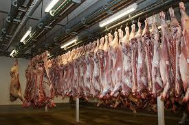 La filière viande veut relancer l'abattage à Marie-Galante