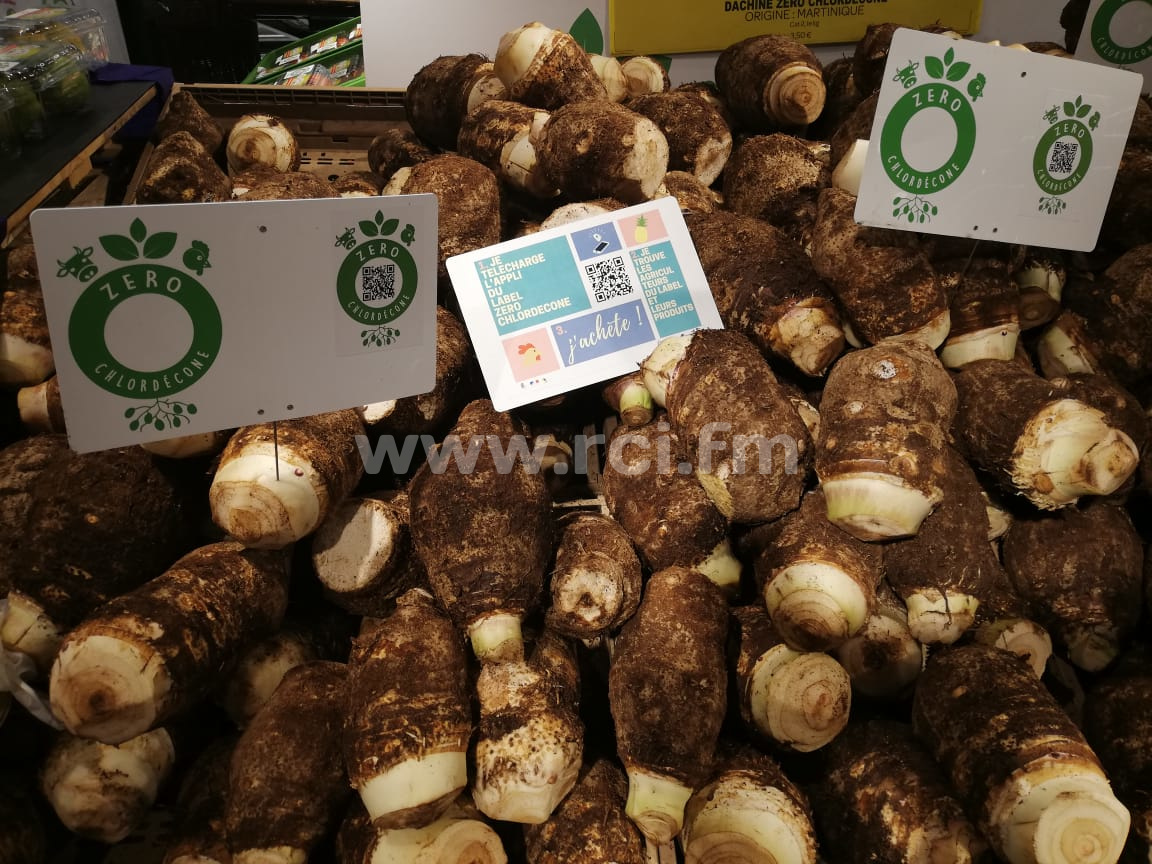 Une application mobile pour tout savoir sur les légumes labellisés zéro chlordécone