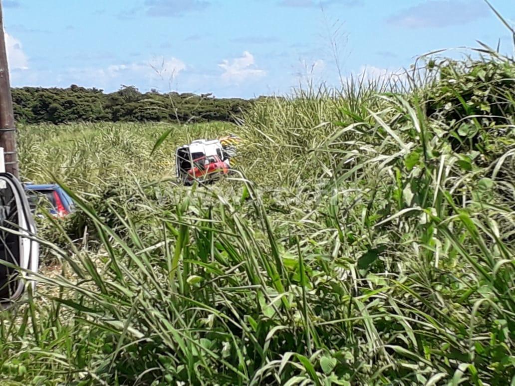 Le corps ensanglanté d'un homme retrouvé dans un champ de canne au Vauclin