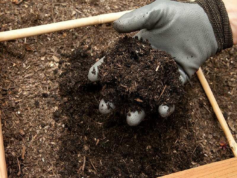 la CARL organisait sa dernière distribution de compost