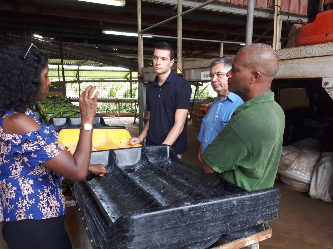 Une délégation d'élus du Rassemblement National en Martinique