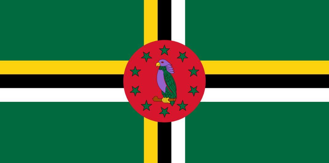 L'organisation des états des américains s'inquiète de l'absence de réforme électorale en Dominique