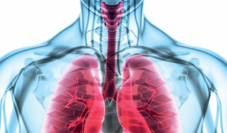 Des journées consacrées aux maladies respiratoires