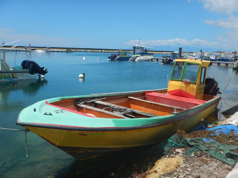 Chlordécone : la priorité c'est la dépollution selon les marins pêcheurs