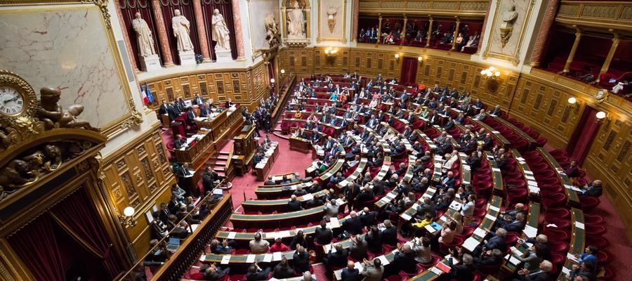 Les Sénateurs adoptent un amendement favorable à l'expérimentation d'un duty free pour les croisiéristes