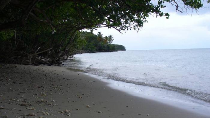 La baignade de nouveau interdite à l'Anse Caritan à Sainte-Anne