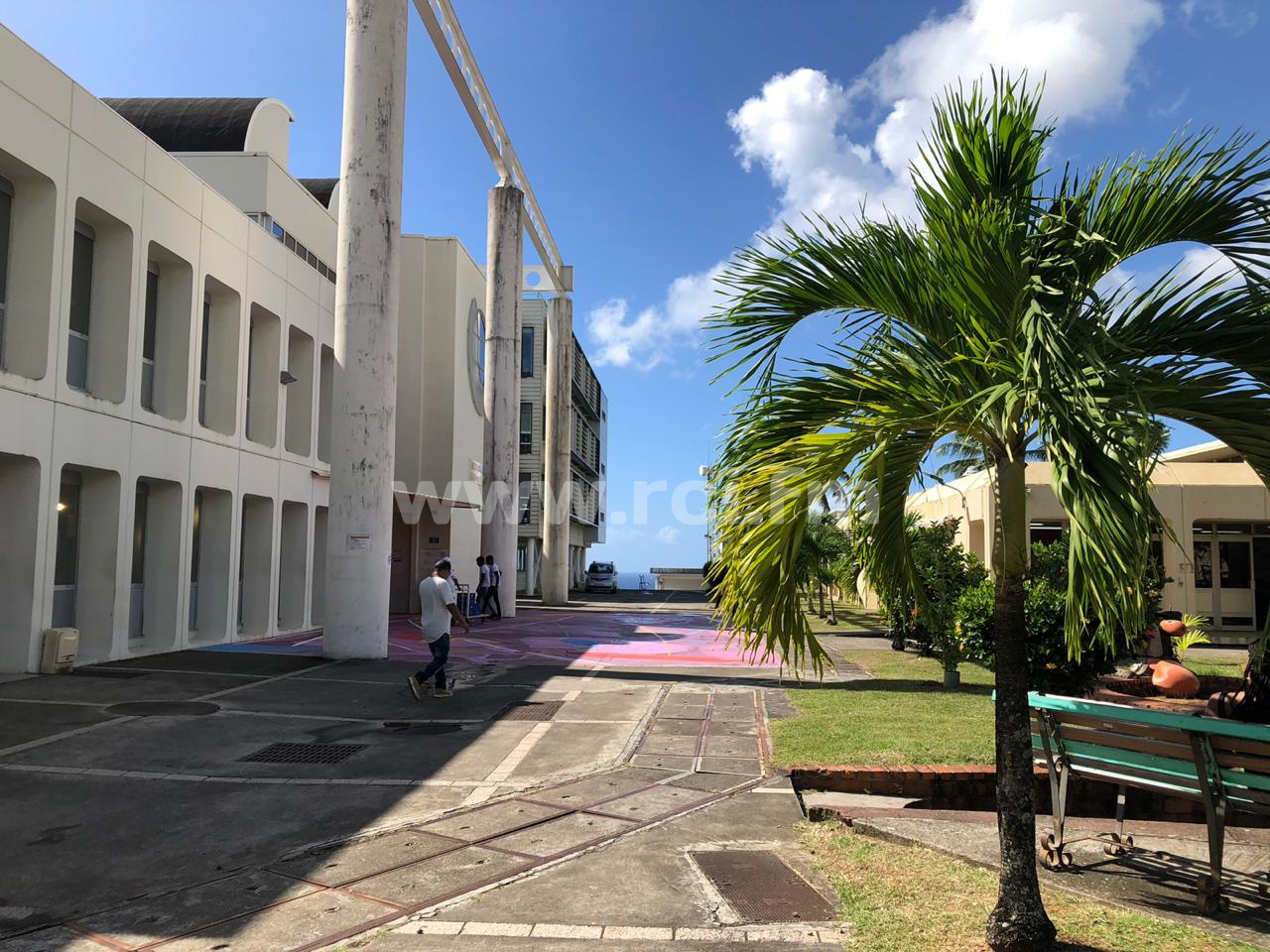 """Eustase Janky, président de l'université des Antilles : """"Ces nouveaux statuts mettent en place la loi"""""""