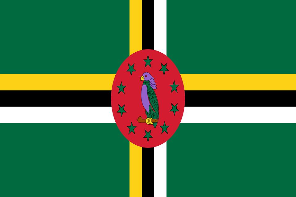 Dominique : les opérations de vote ont débuté