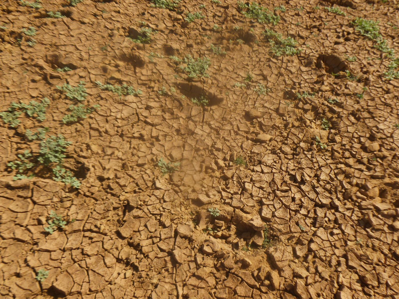 Météo : un mois de novembre plus sec que d'habitude