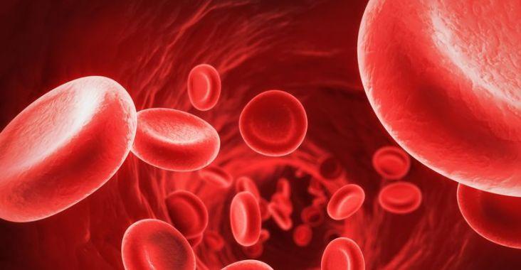 Un nouvel espoir pour les malades atteints de drépanocytose