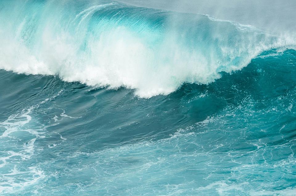 Séisme à Porto Rico: pas de  tsunami à craindre en Guadeloupe