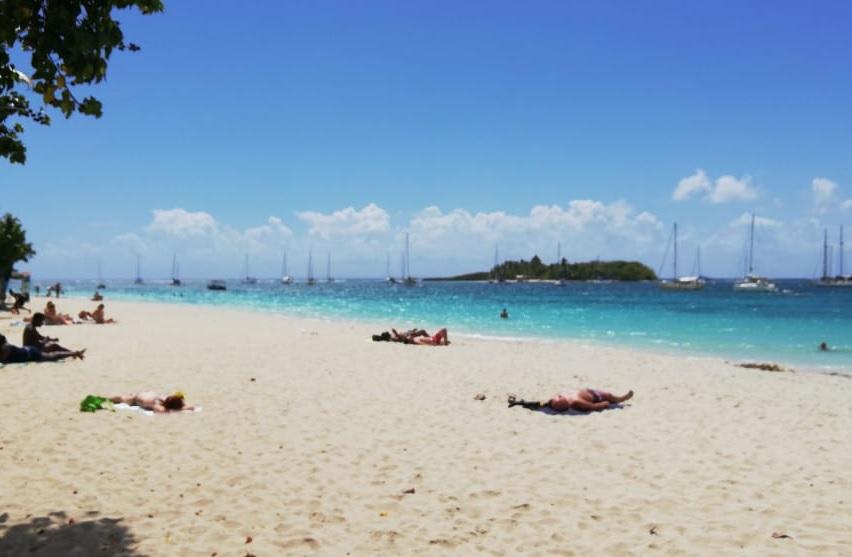 Les Antilles, destinations plébiscitées pour les vacances de février