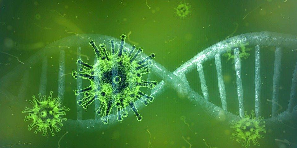 Point Coronavirus : 96 cas et un nouveau décès ce vendredi