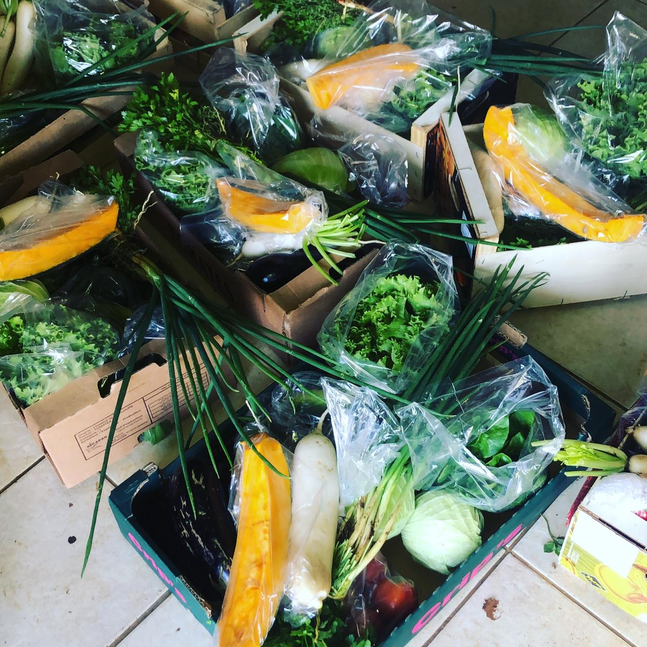 Des paniers de fruits et légumes frais livrés par des jeunes sur toute la Guadeloupe