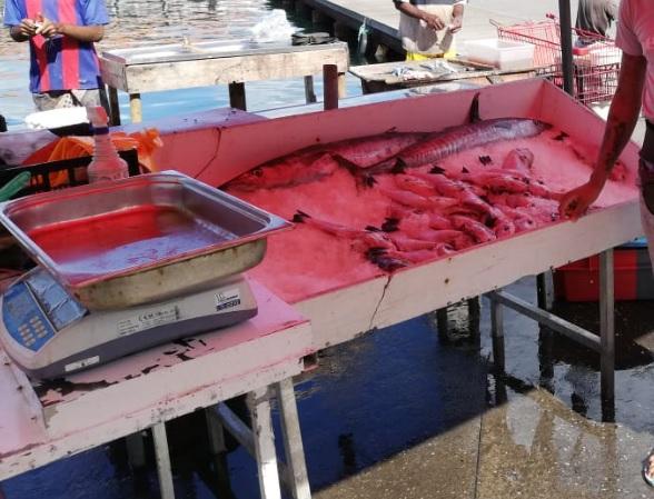Le prix du poisson flambe sur certains marchés