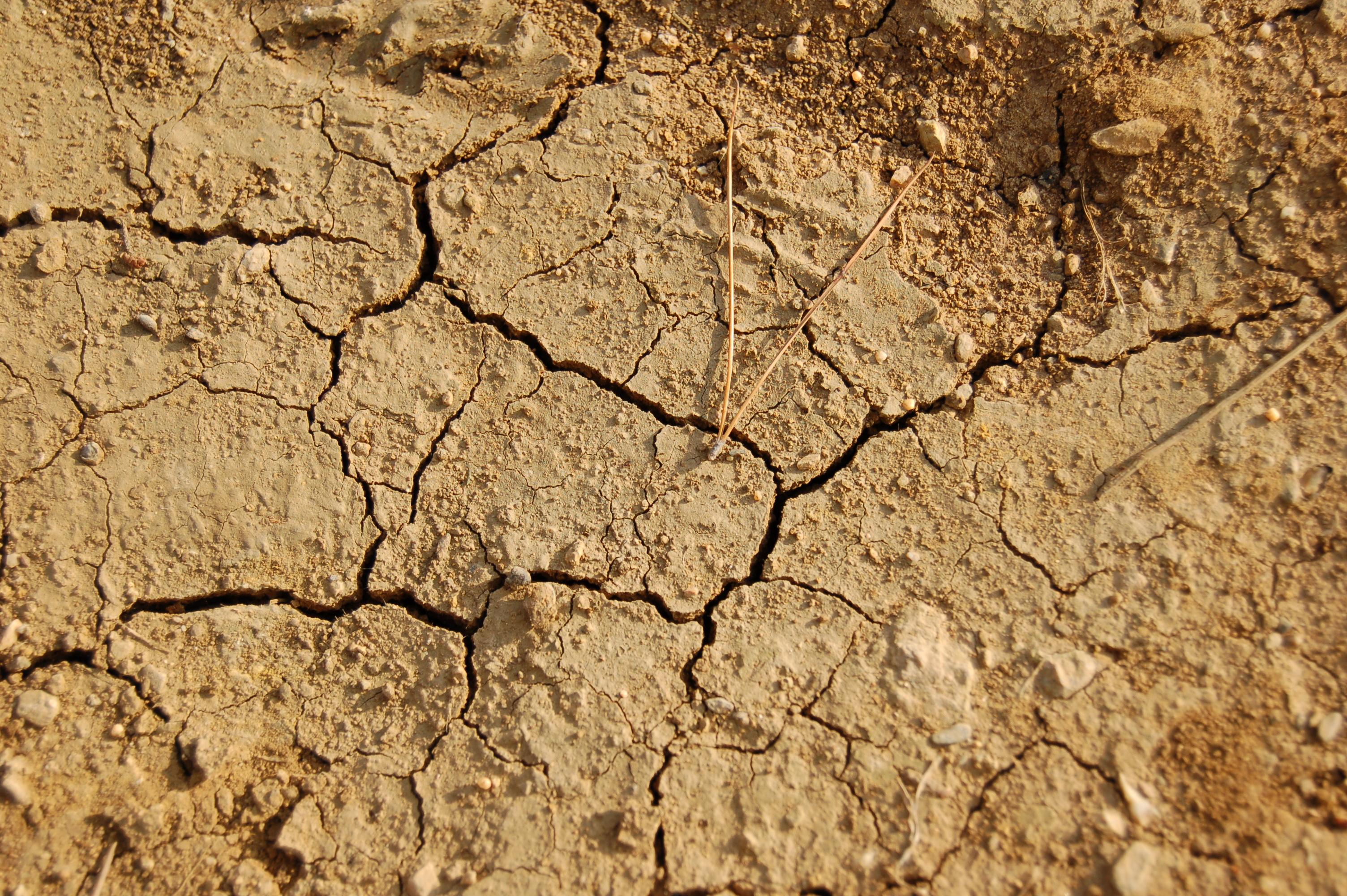 L'une des sécheresses les plus fortes au cours des 30 dernières années