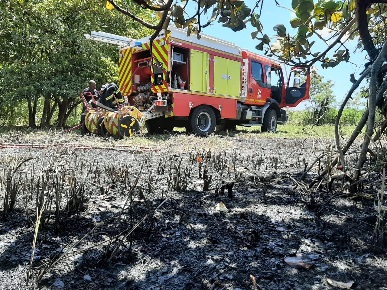 3 hectares de cannes partent en fumée à Petit-Canal
