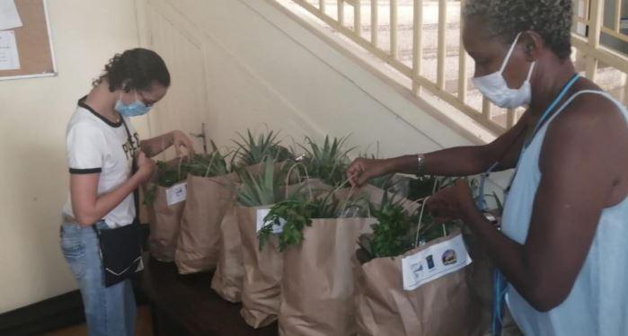 Lasotè, l'agriculture paysanne en panier
