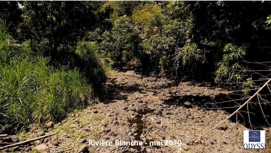 Odyssi et la SME alertent sur le niveau plus qu'inquiétant des rivières de Martinique