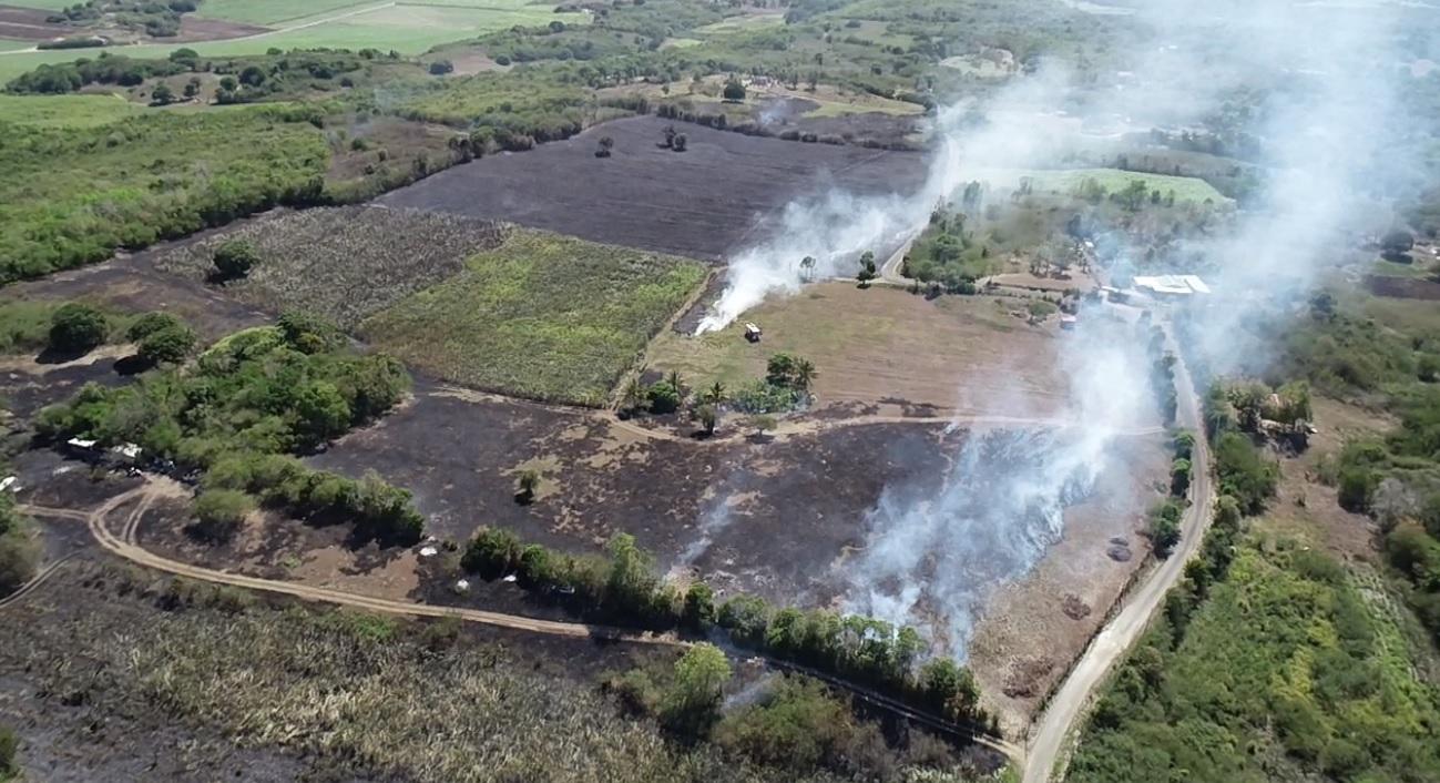 Un spectaculaire feu de canne à Port-Louis