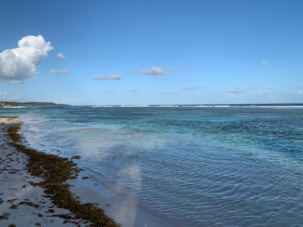 Se baigner sans oublier la protection du littoral