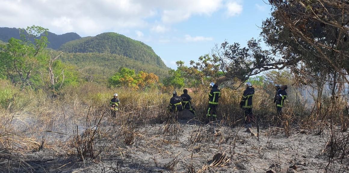 Un feu de broussailles a mobilisé les pompiers pendant 8h