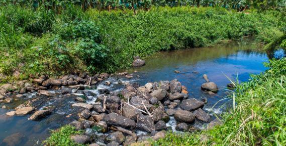 Au Gros-Morne, où les rivières sont au plus bas, le maire alerte la population