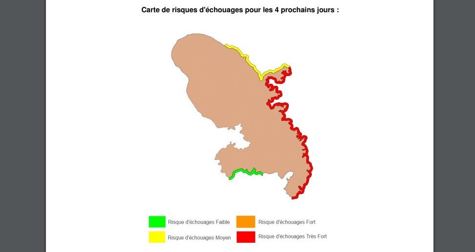 Sargasses : des nappes d'algues en approche de la côte Atlantique