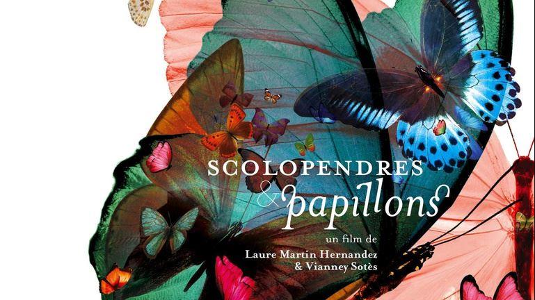 """""""Scolopendre et papillon"""", un film primé sur l'inceste diffusé sur internet"""