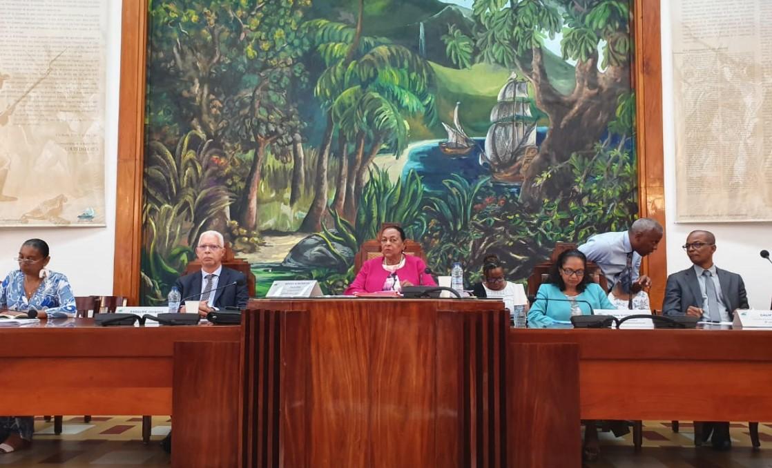 Plénière du Conseil Départemental : unanimité pour Josette Borel-Lincertin