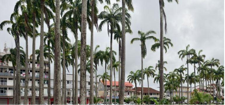 Covid-19 en Guyane : hôpital de campagne, réservistes et reconfinement à l'étude