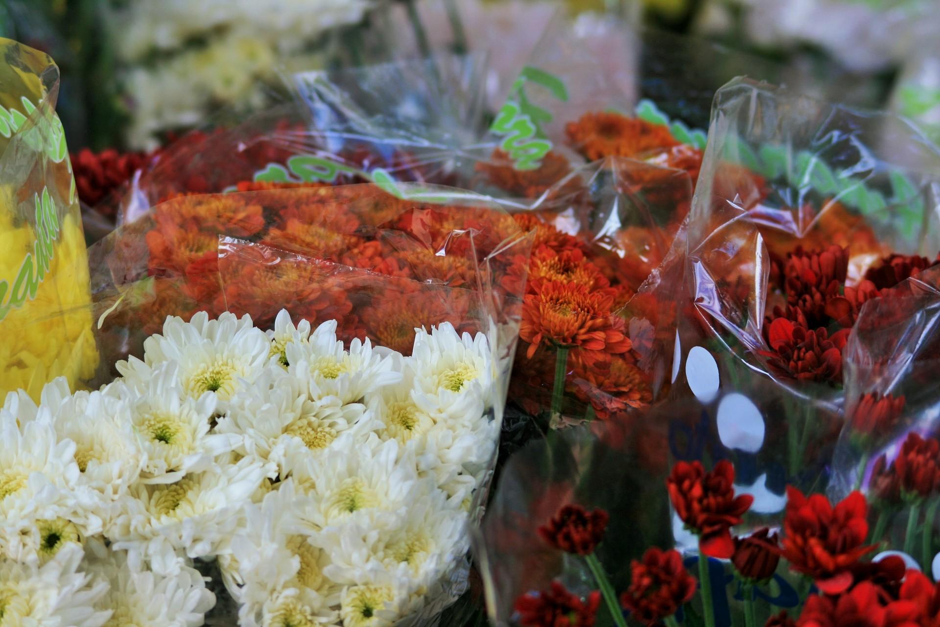 Les artisans fleuristes évoquent une concurrence déloyale des marchands ambulants
