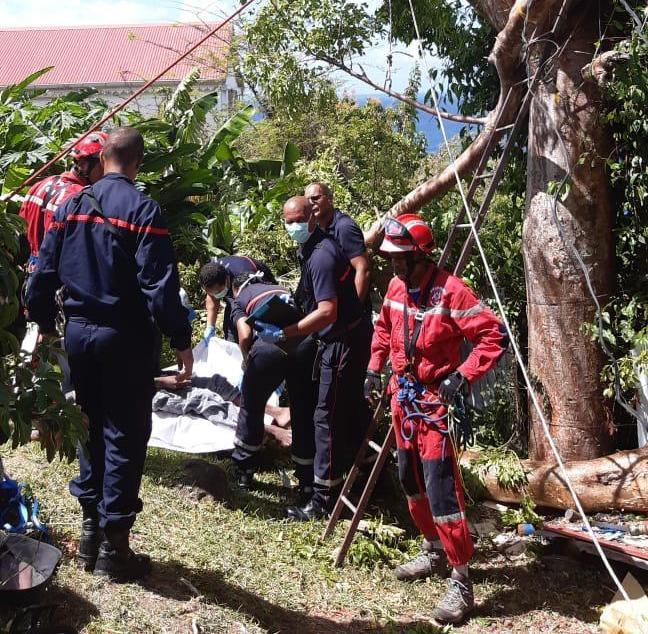 Bloqué dans un arbre, il est sauvé par les pompiers