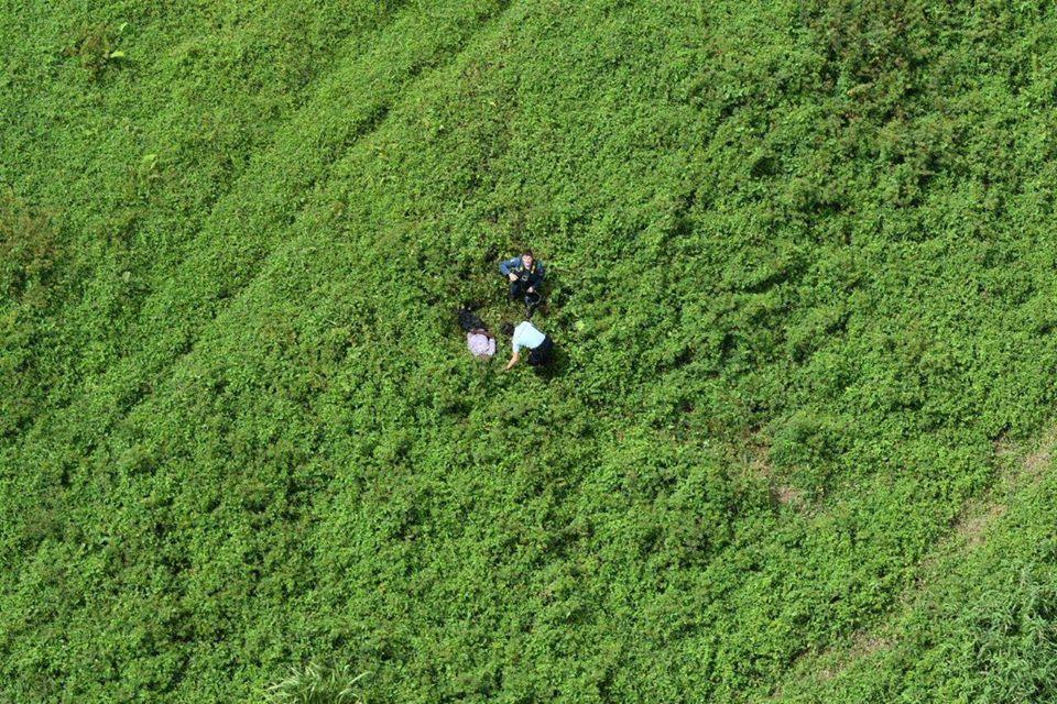 Un sexagénaire porté disparu, retrouvé grâce à l'hélicoptère de la gendarmerie