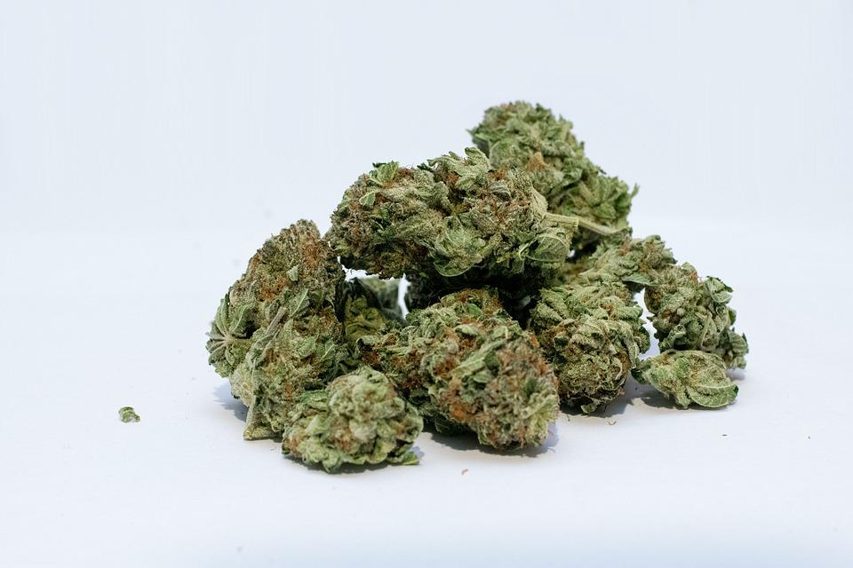 Deux enfants hospitalisés à la MFME suite à l'ingestion de résine de cannabis