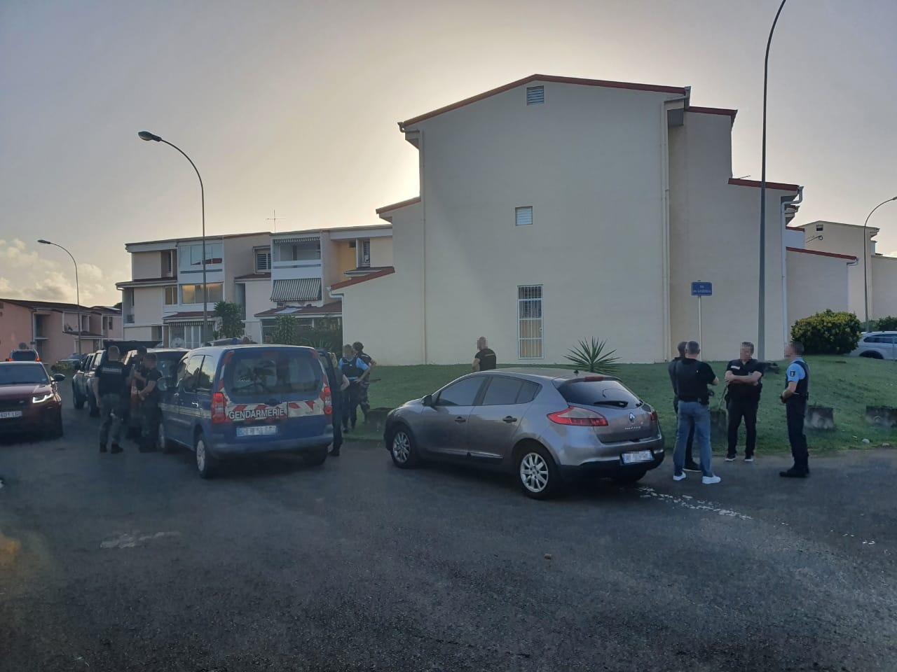 Importante opération des gendarmes à Ducos