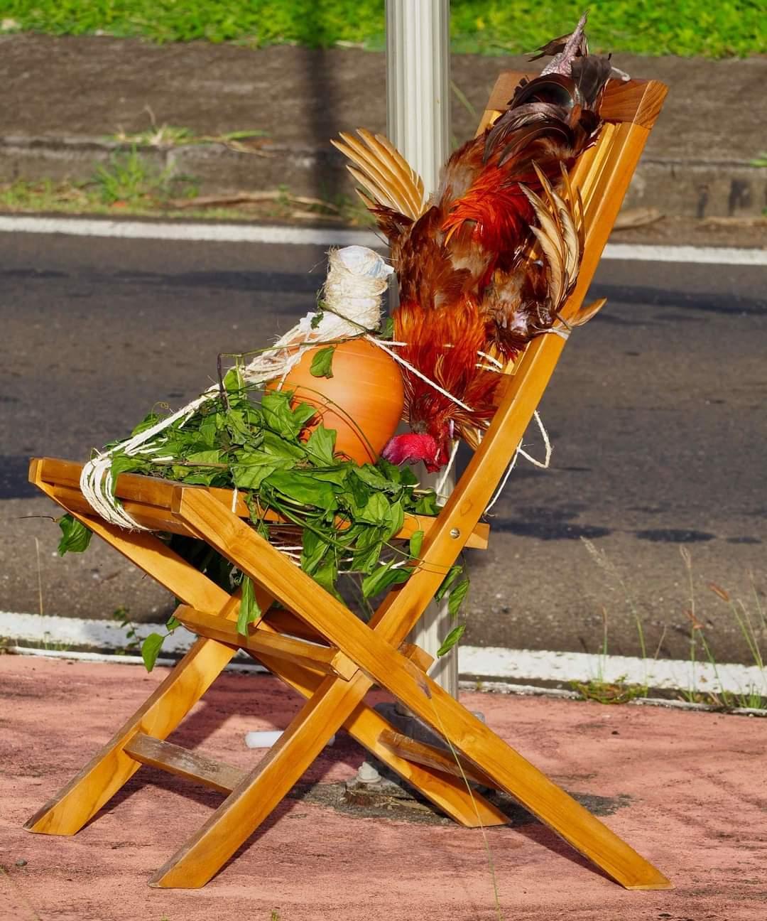Un quimbois découvert ce matin au Lamentin