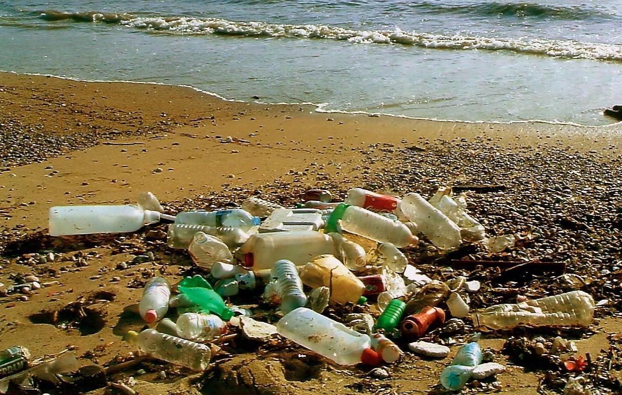 Beach Party : l'ONF porte plainte pour abandon de déchets