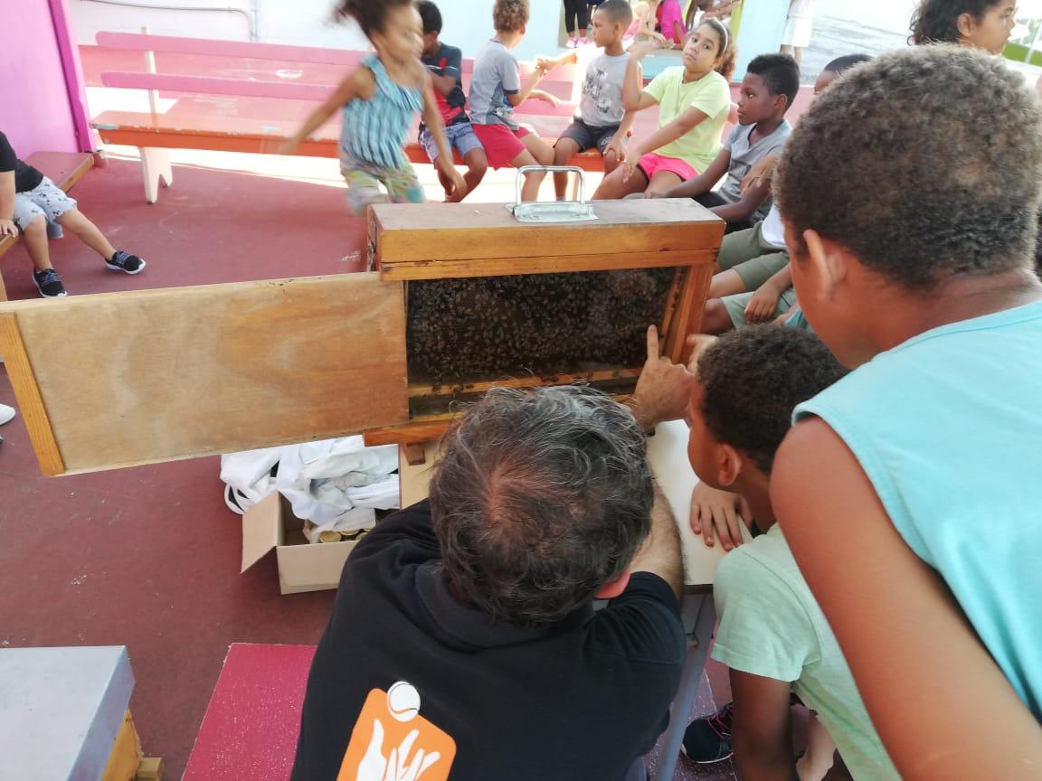 A la découverte des abeilles pendant les vacances