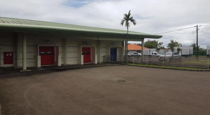L'abattoir de Martinique est fermé pour au moins 5 jours