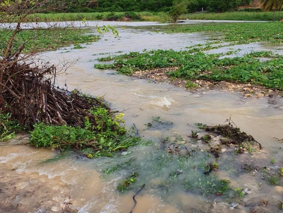 Des exploitations agricoles du Moule dévastées par des pluies diluviennes