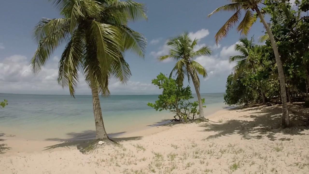 Fête sauvage à Port-Louis : l'organisateur jugé au tribunal