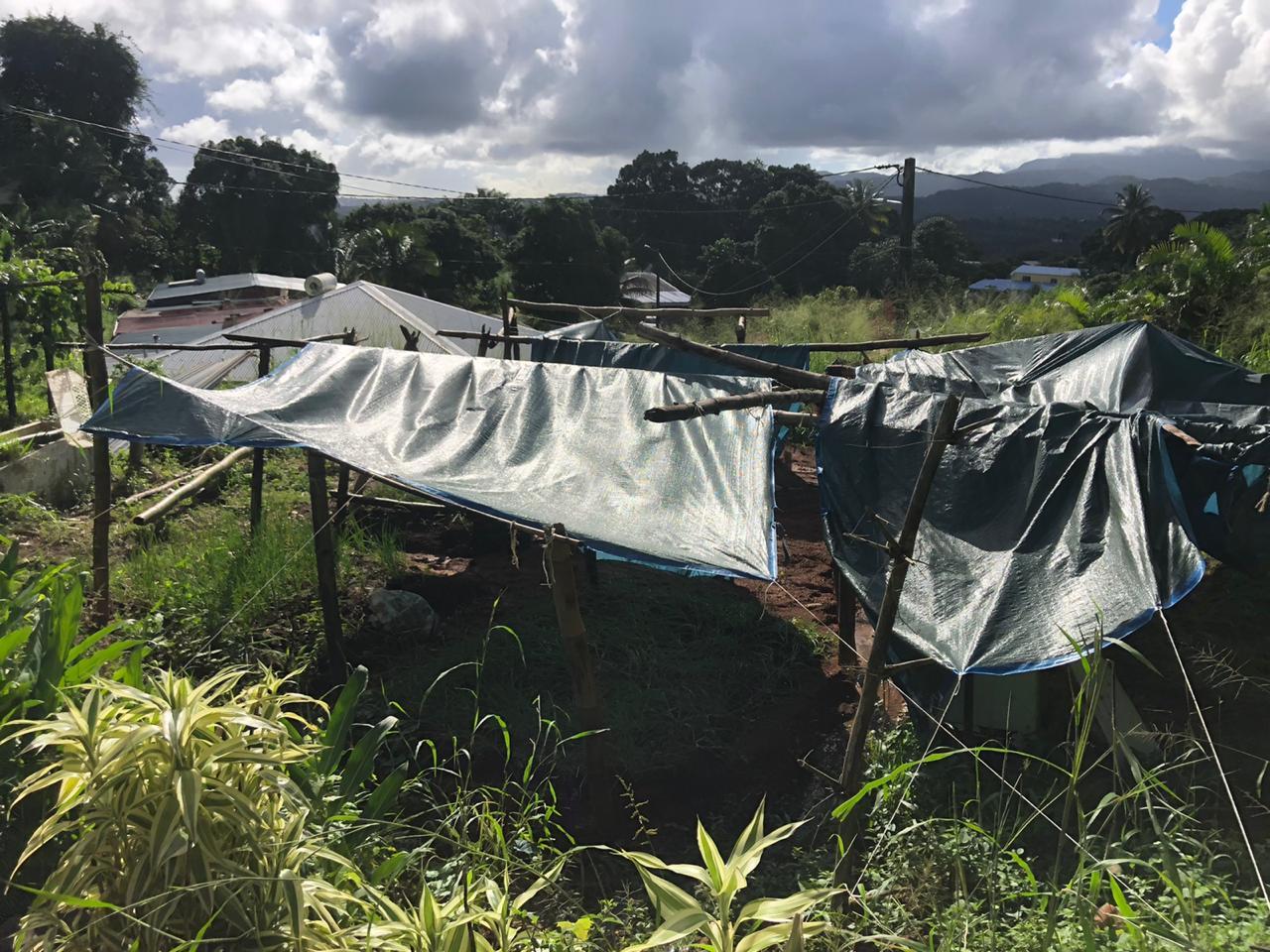 La CTM au chevet des familles sinistrées